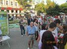 Общинска лятна АНТИСПИН кампания-2013_1